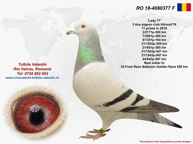 RO 18-4080377 F