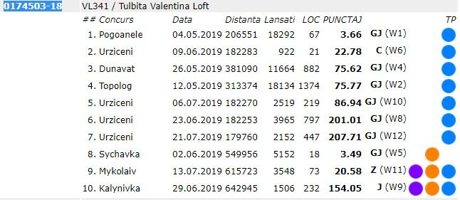 TOP CLASARI 0174503-18